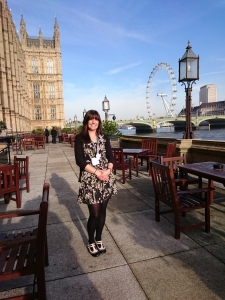 """""""Pathways towards effective Channel governance"""" launch event, House of Commons, Westminster"""