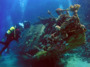 Beautiful Lake Eire diving, photo from http://explorepelee.com/